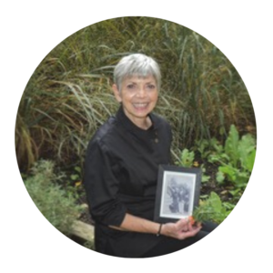 Donna Crivello, Concept Director
